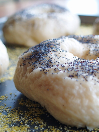 Its_almost_a_bagel