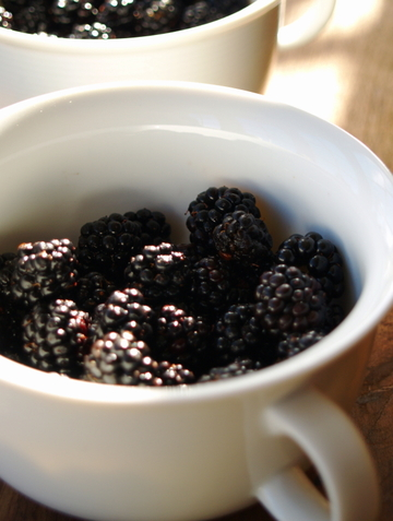 Blackberries_with_mascarpone