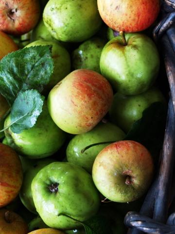 Apples_2_2